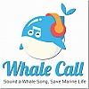 Whale Call Project by Joey Perez